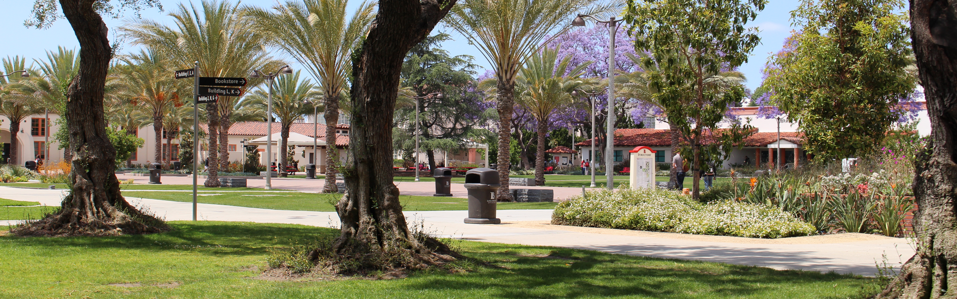 Wide shot of the main courtyard on the LAC campus.