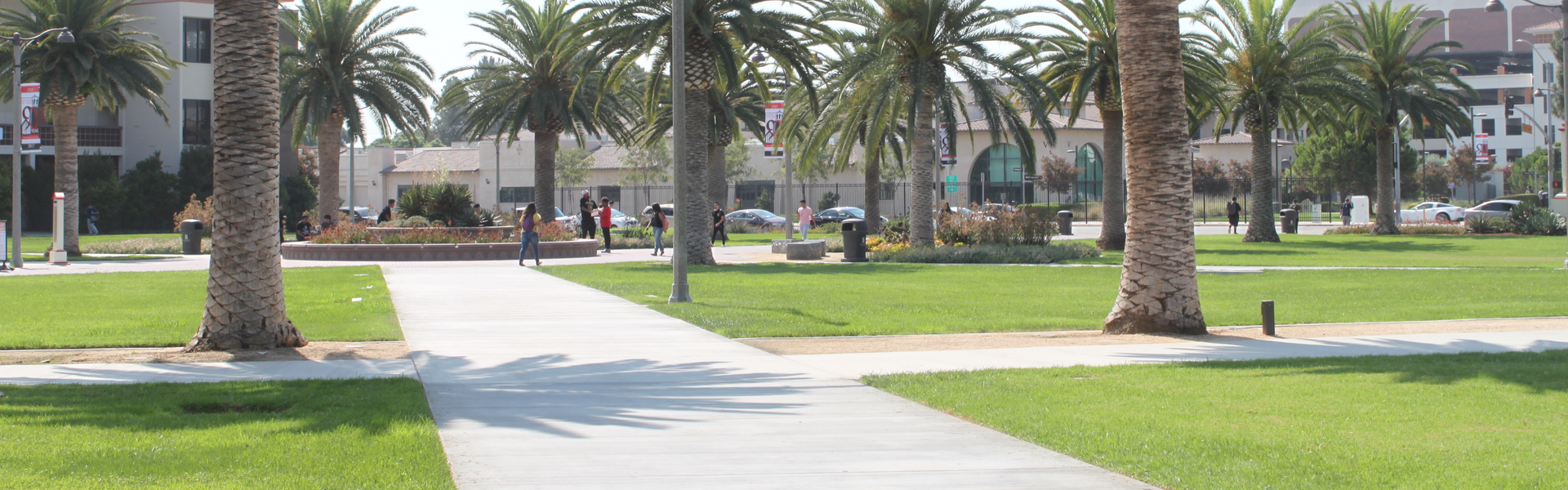 A shot of a walkway on the LAC campus.