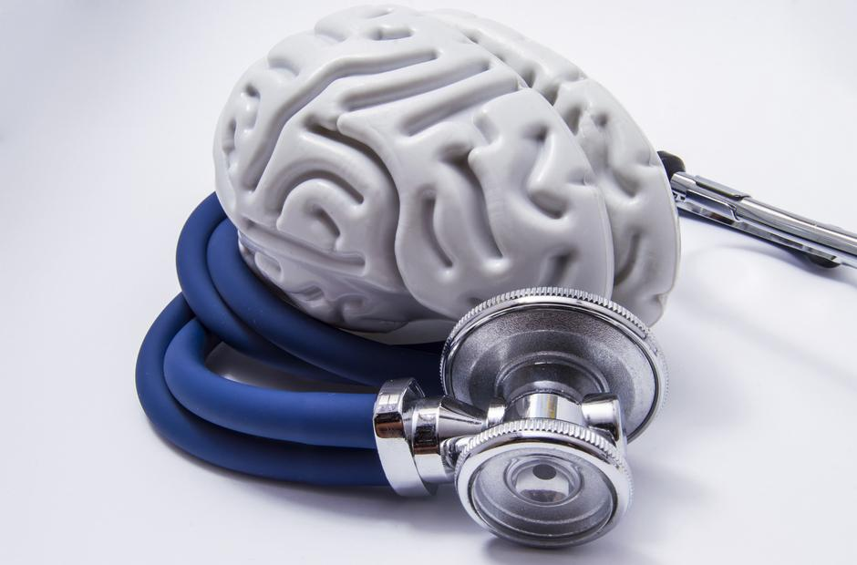 A model of the human brain with a stethoscope.