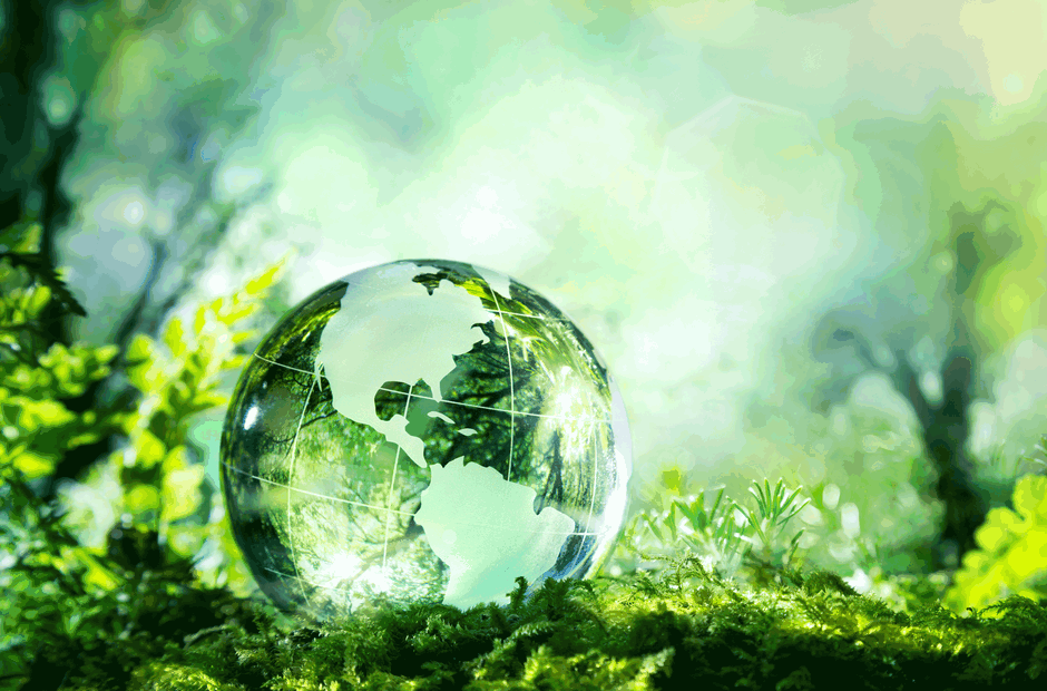 A green, glass globe sitting in a forest.