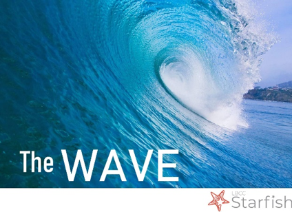 Picture of the blue wave
