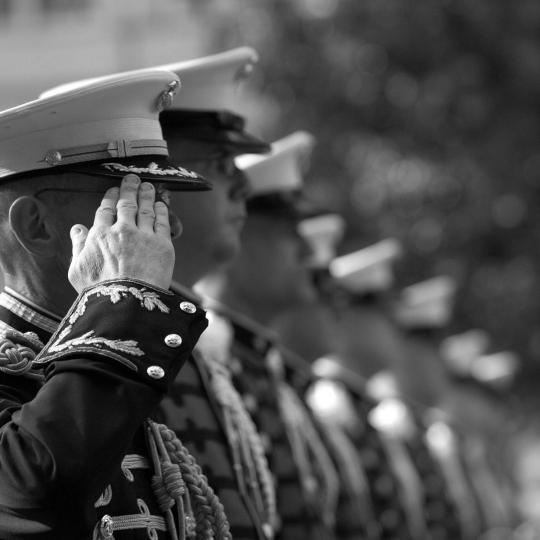 A group of Marines in uniform standing in line and saluting.